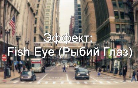 Эффект «Рыбий глаз» (Fish Eye) в Photoshop